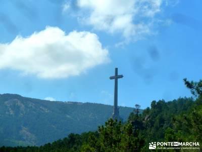 Jarosa - Agua y Bosque Plateado; rutas por madrid;viajes septiembre;rutas cerca de madrid